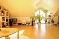 helles  Studio